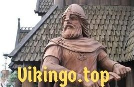 Vikingo.top